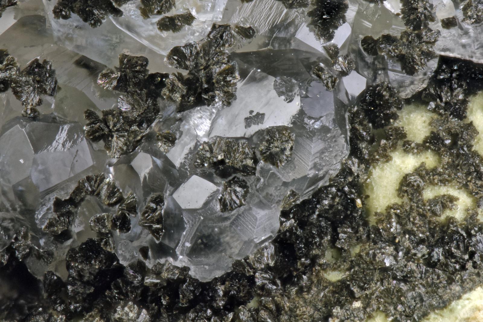 ノントロン石 / Nontronite