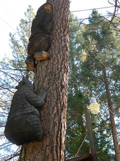 Fun Bear Carvings