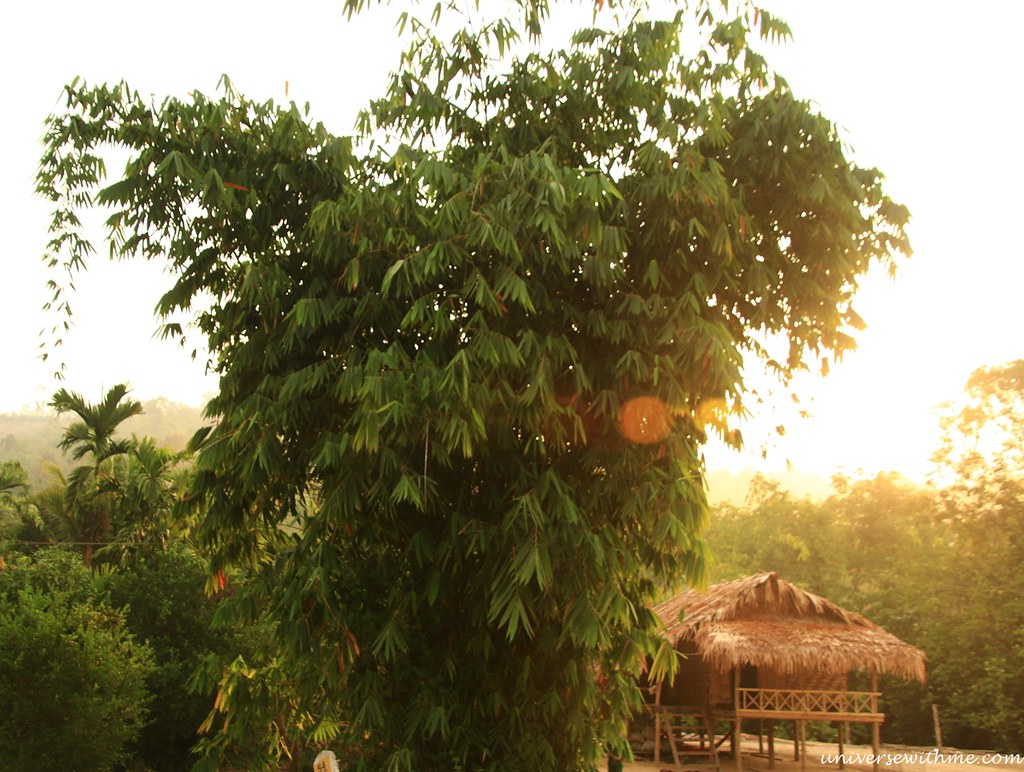 Myanmar Travel_086