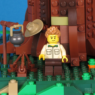LEGO Ideas 21318 Tree House Review-34 | by DoubleBrick.ru