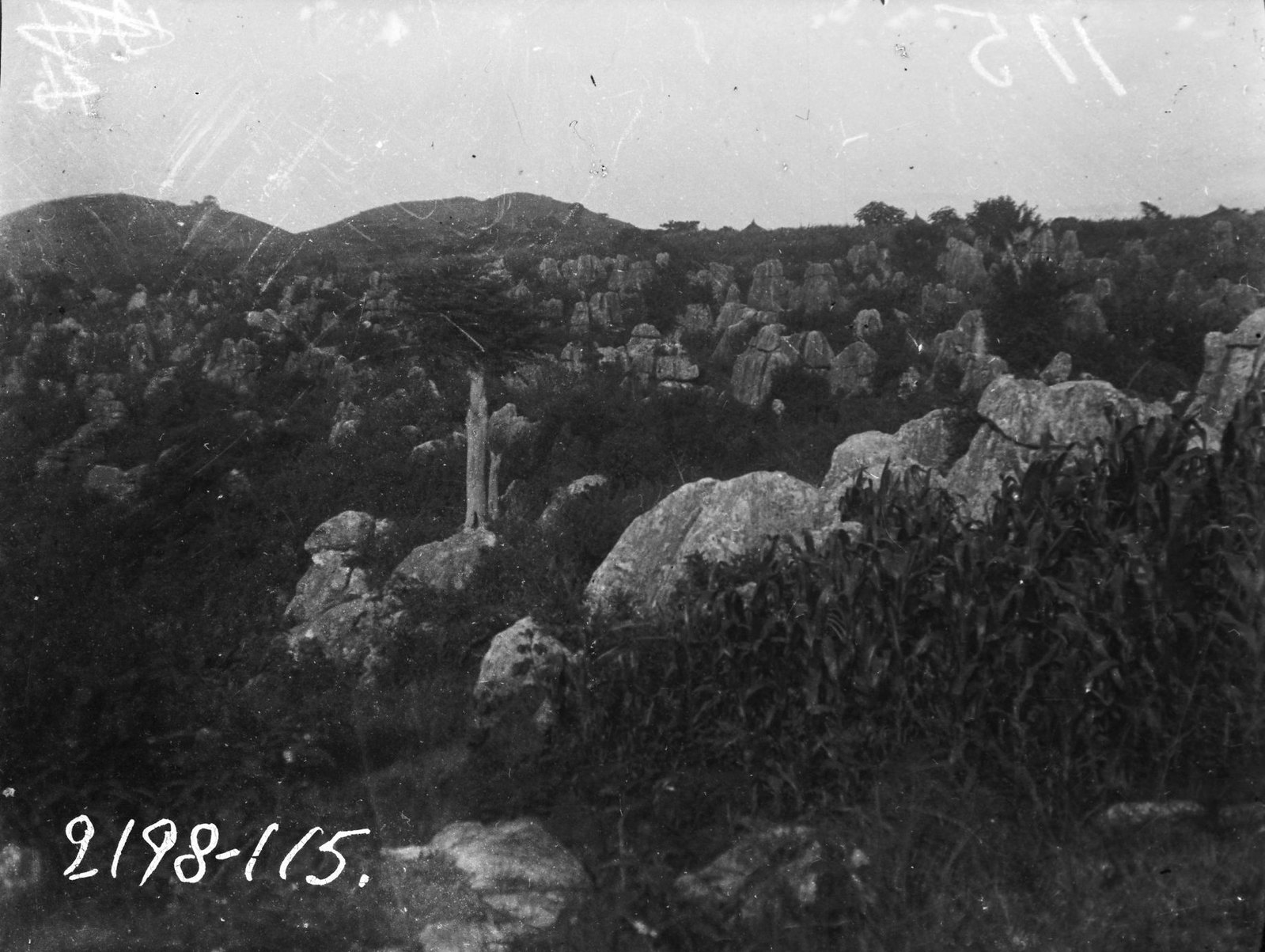 115. Камни различной формы в стране оромо анния в окрестностях города Генами