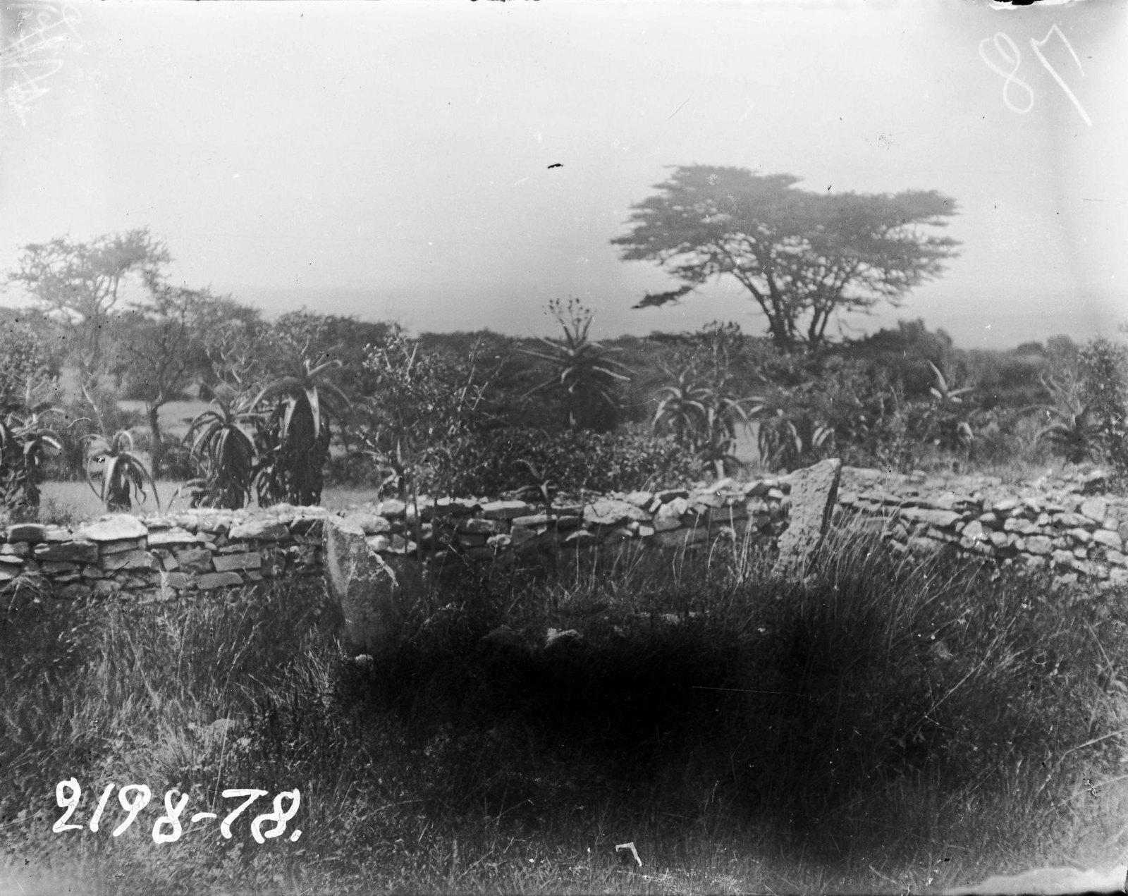 78. Могила сомали