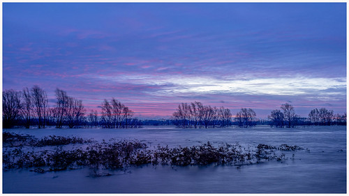 water waal river wetlands rising netherlands gelderland tiel passewaaij morning sunrise trees sky atmospere long exposure clouds light blue
