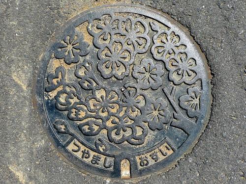 Tsuyama Okayama, manhole cover (岡山県津山市のマンホール2)