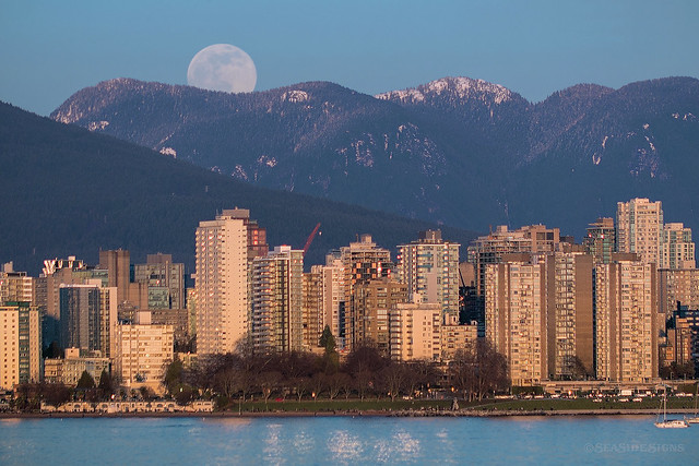 Peeking Out 🌝🗻 Vancouver, BC