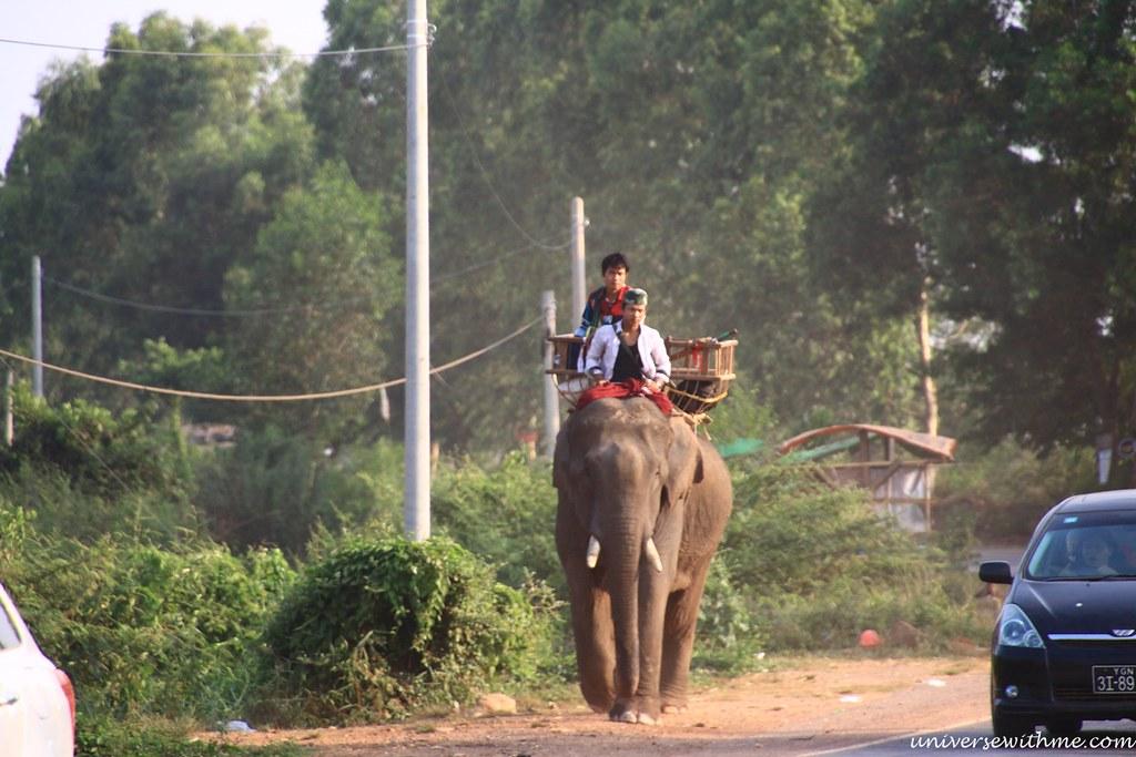 Myanmar Travel_053