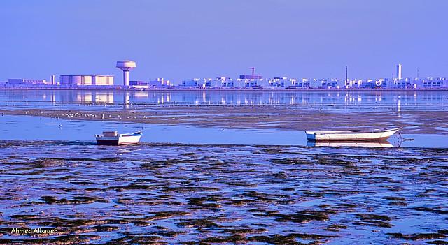 Early morning low tide بحـر الديـر الشرقي عند أدنى جزر