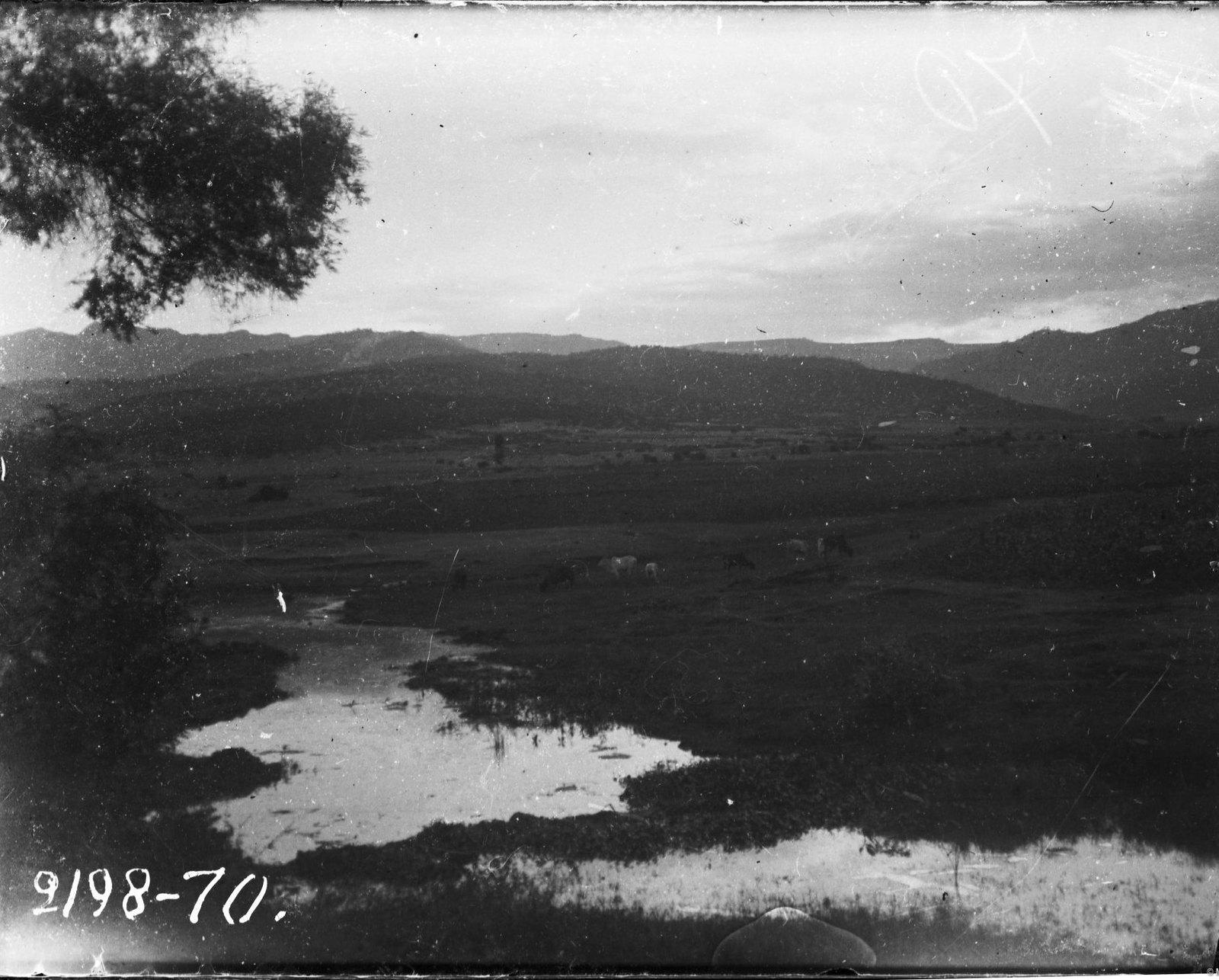 70.  Пейзаж Вид на речку
