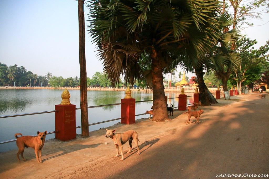 Myanmar Travel_077