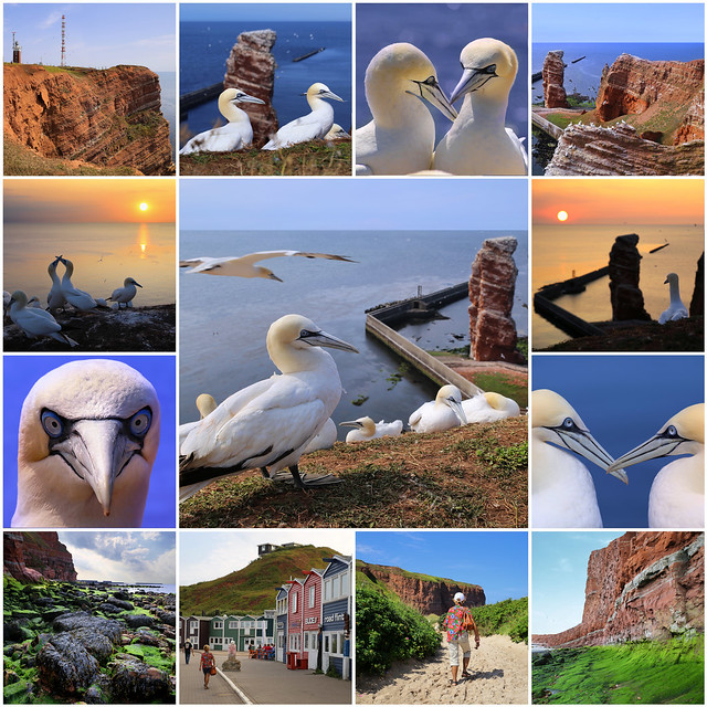 Helgoland is a small archipelago in the North Sea