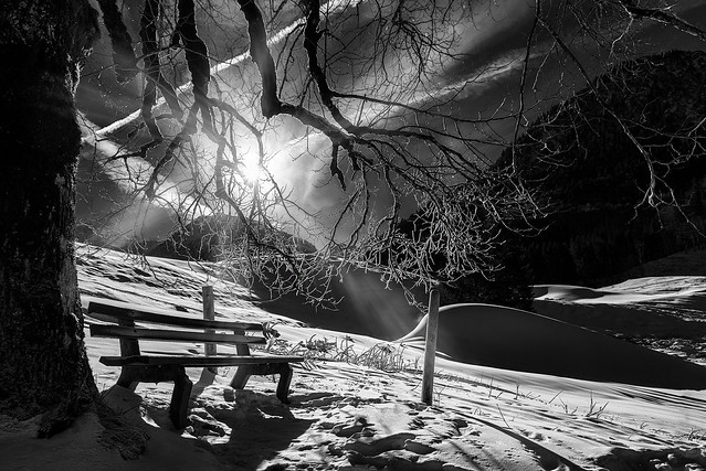 empty bench .