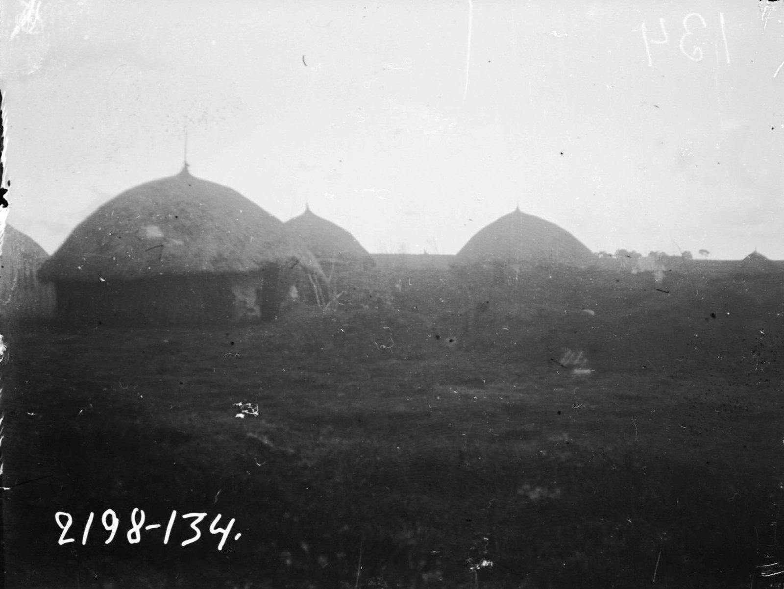 134. Вид деревни народа оромо