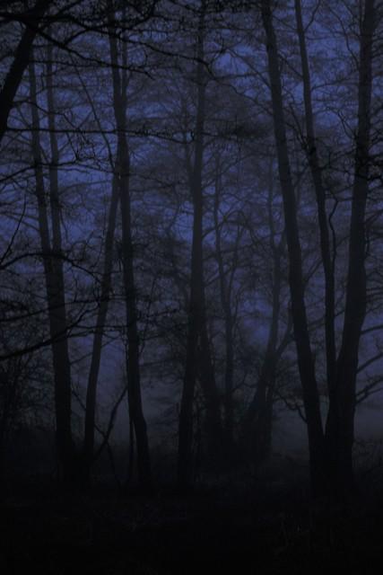 Fogmospheric