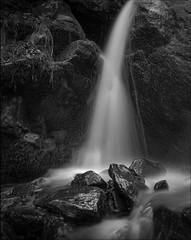 Dark Hollow Falls - Shenandoah National Park [HP5+ - Mamiya 645]