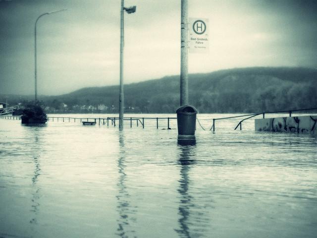 Rhine floods