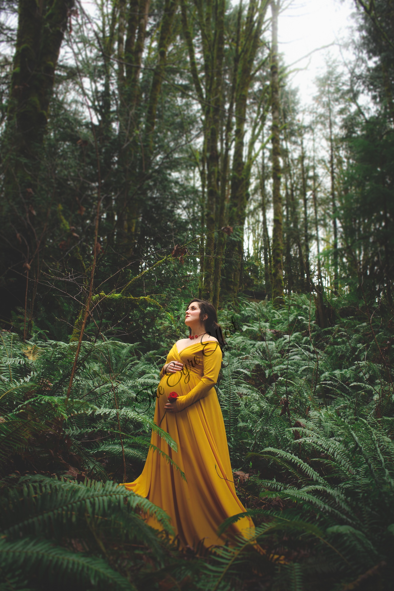 Beauty and the Beast maternity photoshoot