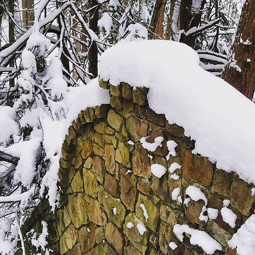Snow-covered stone wall #ChestnutRidge #wny #orchardpark #winter #nature #hiking #trees #snow #stonework