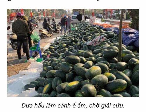 duahau_eam01