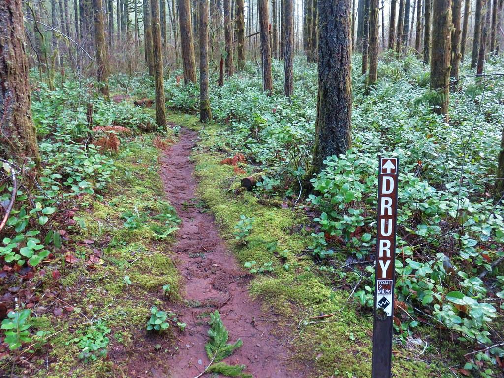 Drury Trail