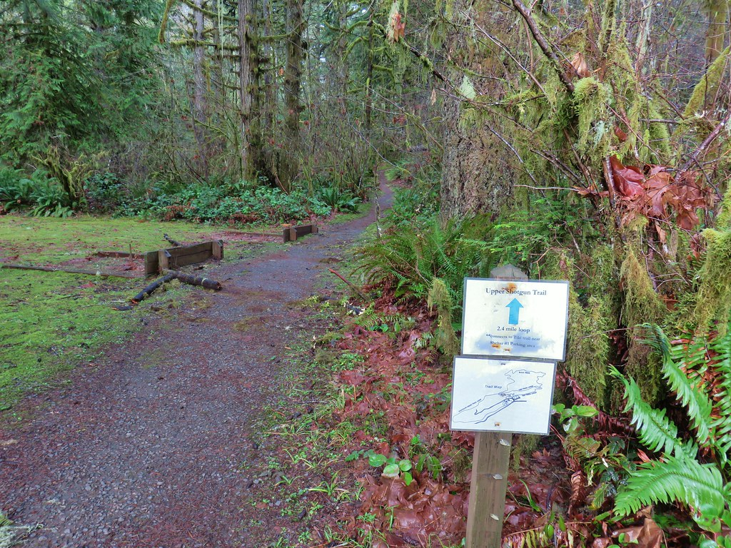 Upper Shotgun Trail
