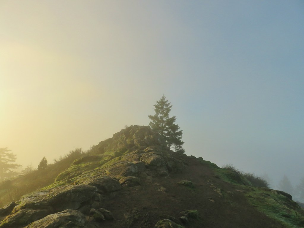 Spencer Butte's summit