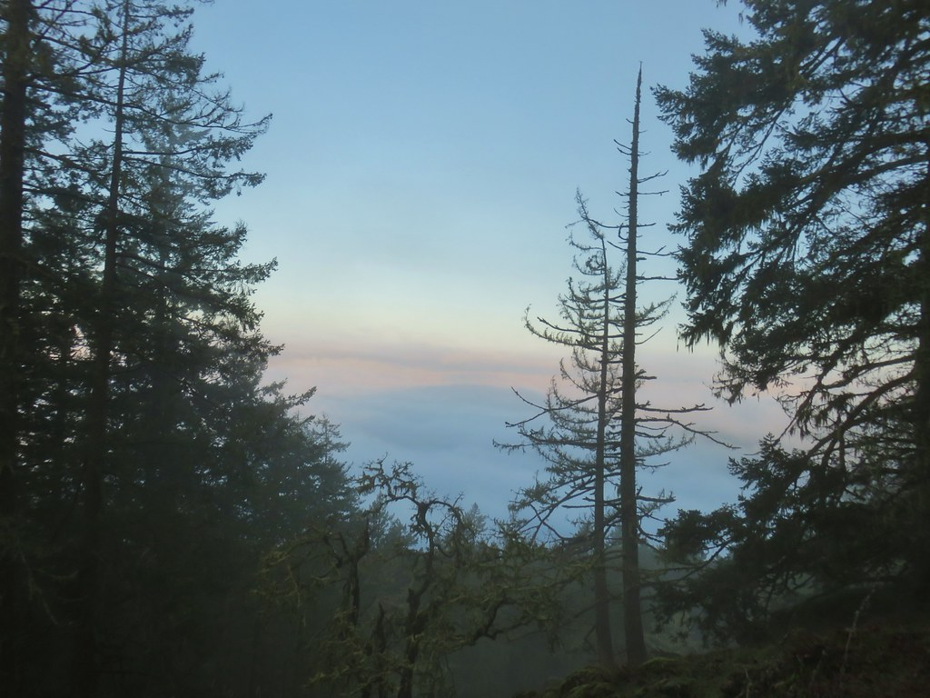 Cloudy, foggy view from Spencer Butte