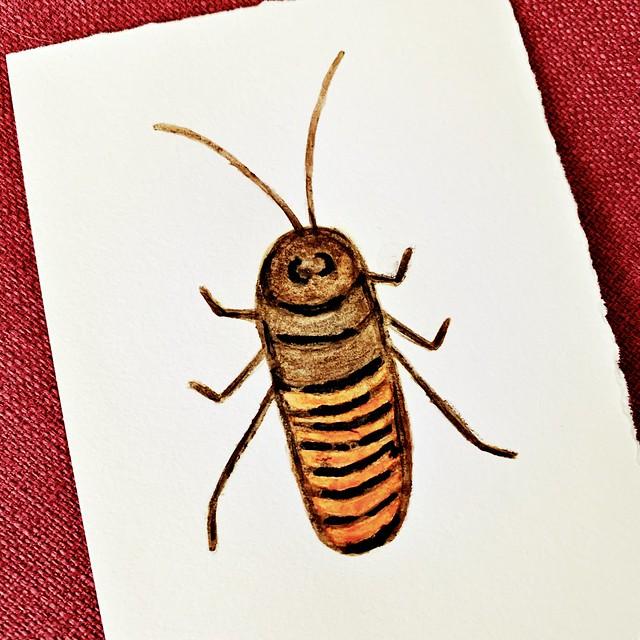 Watercolor Pencil Cockroach