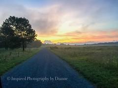 #inspiredphotographybydianne #charlottesvillephotographer #virginiaphotographer #sunset #bigmeadow #shenandoahnationalpark #naturephotography