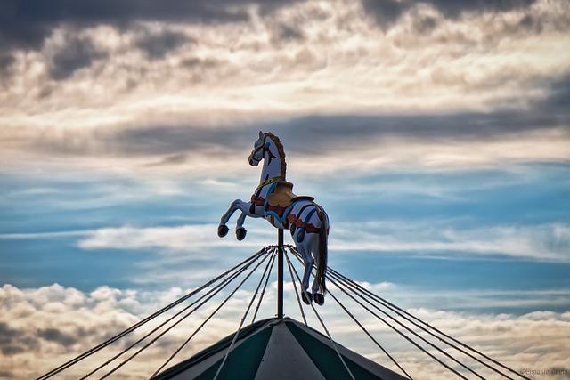 Storia di un cavallo che volò in cielo. - History of a horse that flew into the sky.