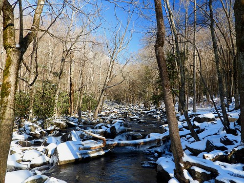 river stream mountainstream flowing frosty frost ice icy snow snowy snowcovered chimneys winter january trailside smokies gsm greatsmokymountains gsmnp greatsmokymountainsnationalpark nationalpark tn tennessee trees boulders rocks bluesky p1000 coolpixp1000 nikoncoolpixp1000 jennypansing