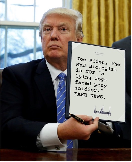 Trump_ponysoldier