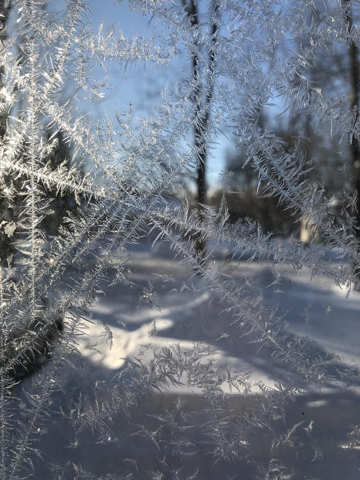 So sick of being frozen!