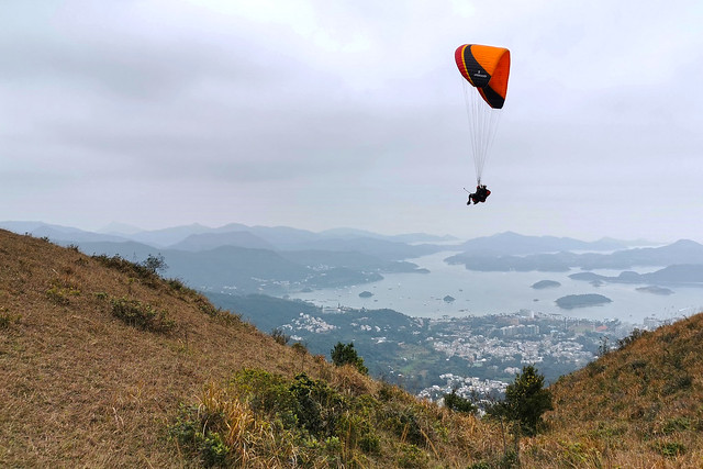 Paragliding flying in the overcast sky