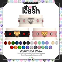 .:Short Leash:. Yours Truly Collar
