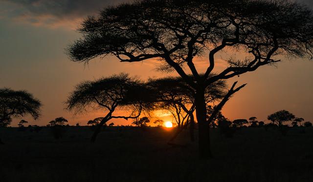 Tanzania_19_Tarangire_Sunset