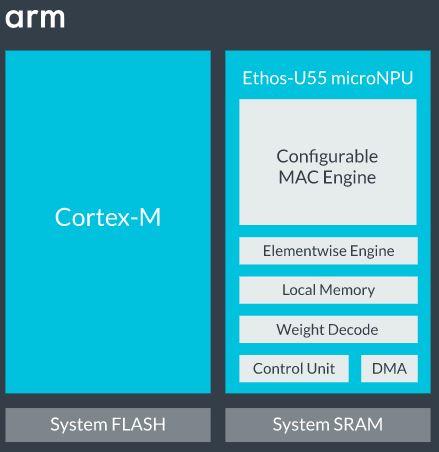 Cortex-M55
