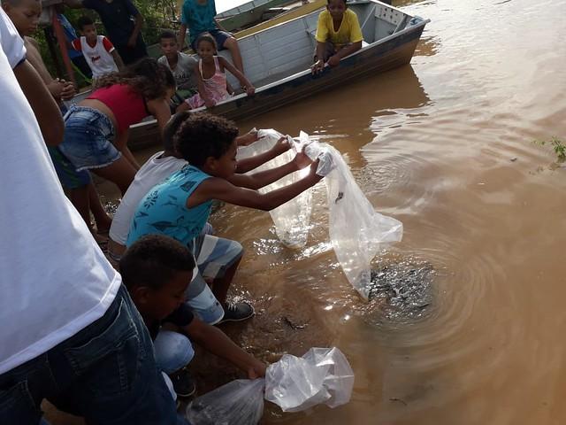 Peixamento na Bahia