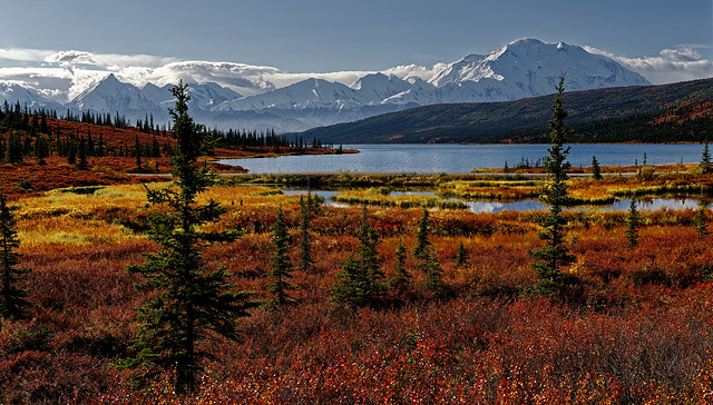 I Could Never Call the Places in the US and Canada a Bucket List (Denali National Park & Preserve)