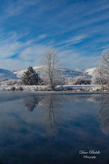The pond was calm