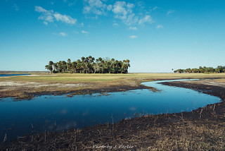 St. Johns River, Canaveral Marshes