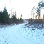 Lysløypa Prestegårdsskogen