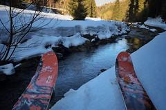 Teréňáky ve skitestu