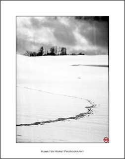 Tracks in the snow around Biei, Hokkaido (美瑛) | by Hans ter Horst Photography
