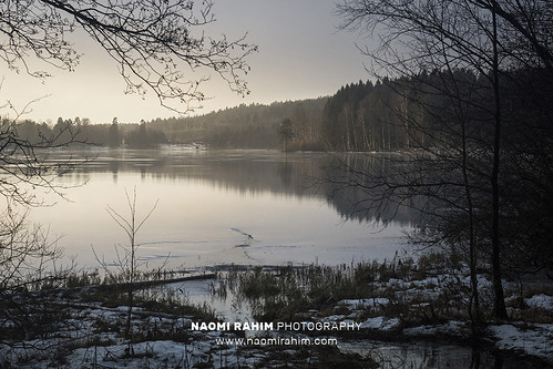 sognsvann lake oslo norway scandinavia europe 2019 travelphotography travel nikon nikond7200 wanderlust water winter trees forest landscape nature morning sunrise reflection