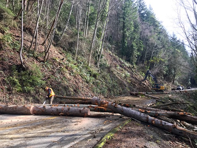 Removing fallen trees from SR 11
