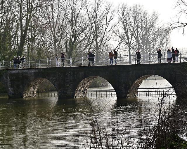 Puente del lago Minnewater