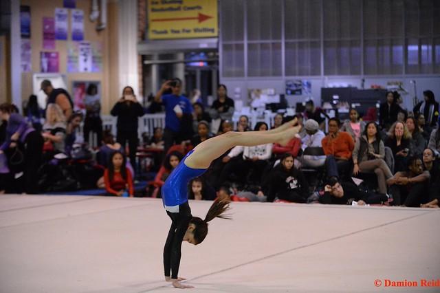 2019-20 - Gymnastics (Girls) Individual Championships