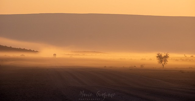 The roads of Namibia at dawn