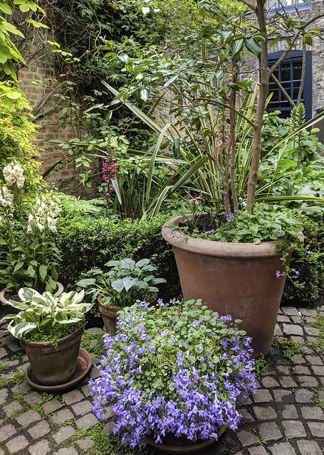 Spitalfields Gardens 2019 Summer