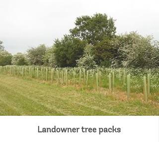 tree packs